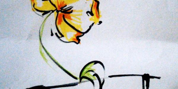 Quel fiore giallo lì